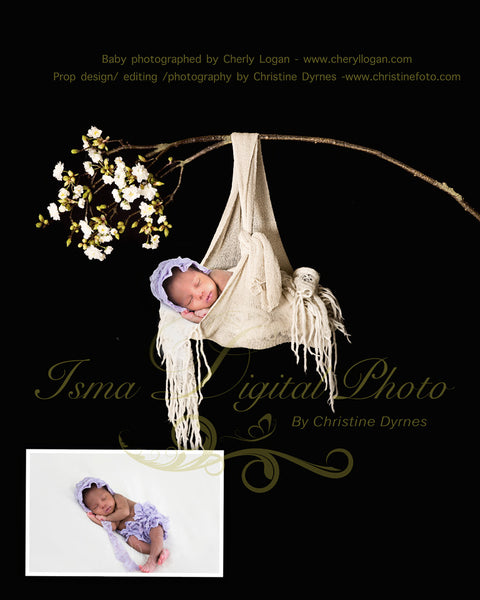 Baby posing swing - Digital backdrop /background