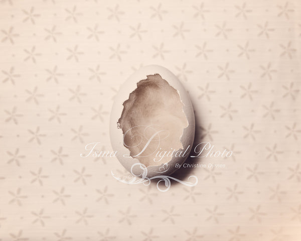 Egg With Cute Star Background  - Beautiful Digital background Newborn Photography Prop download