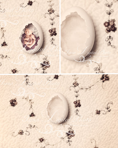 Egg With Wool And Silk Background - Beautiful Digital background Newborn Photography Prop download