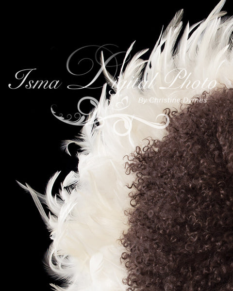 Feather Nest - Black background whit white feather and brown wool - Digital Newborn Photography Prop
