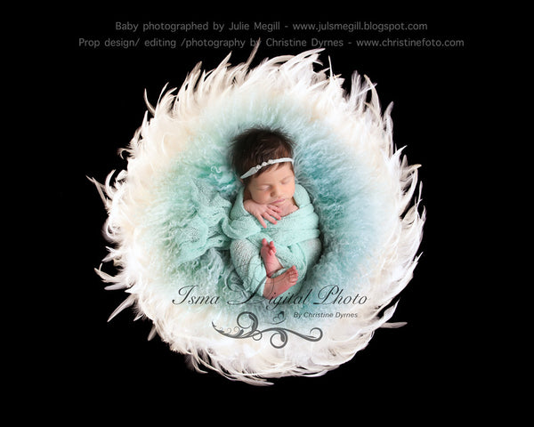 Feather Nest - Black babckground whit white feather and turquoise wool - Digital Newborn Photography Prop