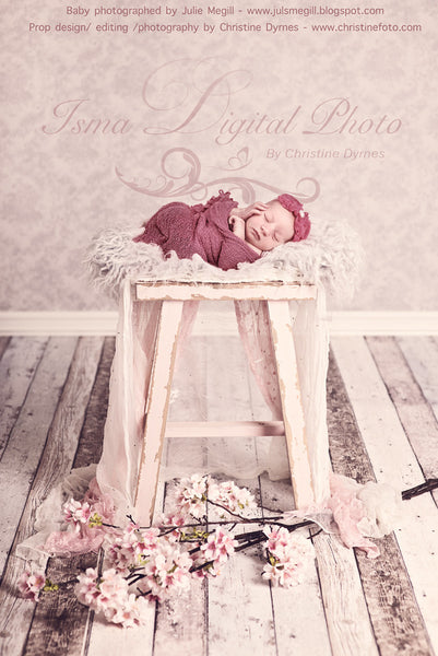 Girl Dream 2 - Beautiful Digital background backdrop Newborn Photography Prop download