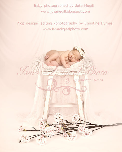 Stool With Flowers Background  - Beautiful Digital Newborn Photography Props download