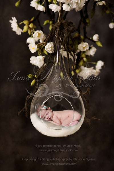 Glass Bowl With Dark Background - Beautiful Digital Newborn Photography Props download