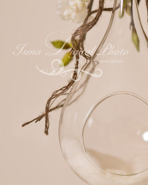 Glass Bowl With Light Background - Beautiful Digital Newborn Photography Props download
