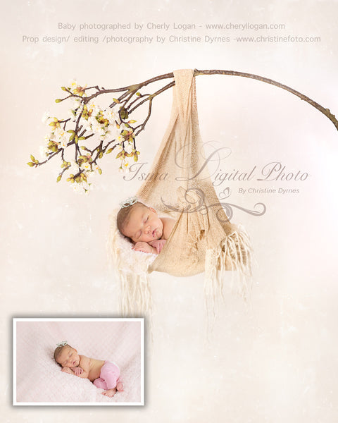 Baby Posing Swing  - Beautiful Digital background backdrop Newborn Photography Prop download