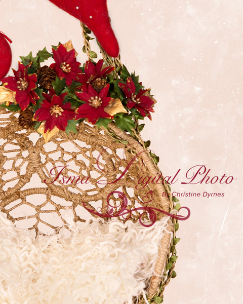 Hanging christmas twine circles bowl - Digital backdrop /background