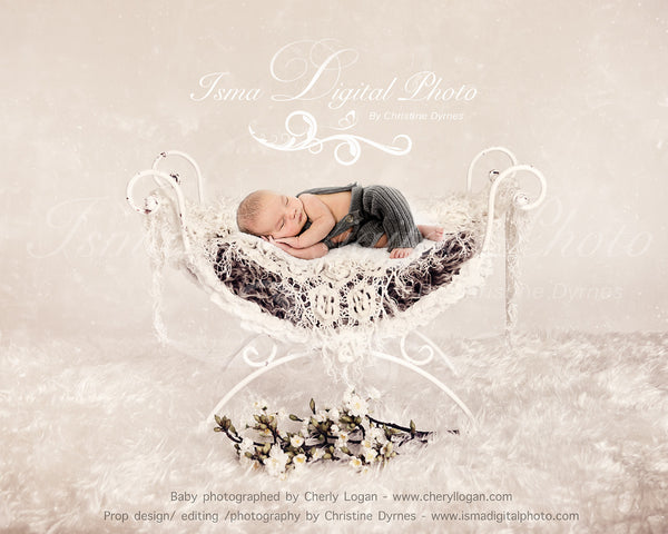 Iron Bed Chair With Flower And Texture - Beautiful Digital background backdrops Newborn Photography Props download