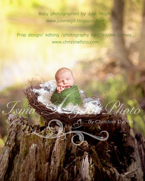 Nest Nature - Beautiful Digital background Newborn Photography Prop download