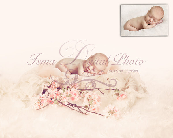 Soft Wool Bed with Flower - Beautiful Digital background Newborn Photography Props download