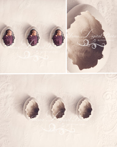 Three Egg Design With Lace Background - Beautiful Digital background Newborn Photography Prop download