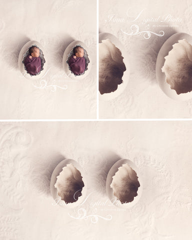 Two Egg Design With Lace Background - Beautiful Digital background Newborn Photography Prop download