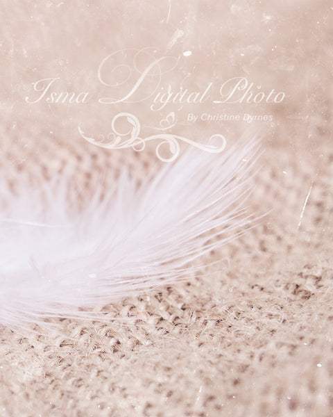 White Feather Baby - Digital Backdrop Newborn Photography Props - Psd file with layers and texture