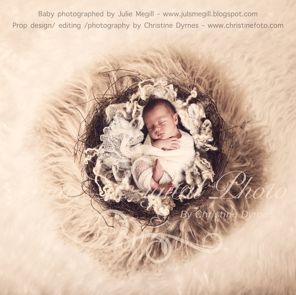Vintage Nest with wool - Beautiful Digital background Newborn Photography Prop download