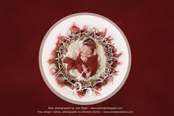 Newborn Christmas nest 5 - Digital backdrop /background - psd with layers