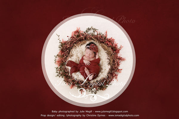 Newborn Christmas nest 8 - Digital backdrop /background - psd with layers