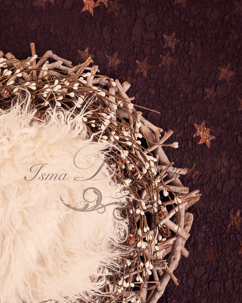 Newborn Christmas nest - Digital backdrop - psd with layers