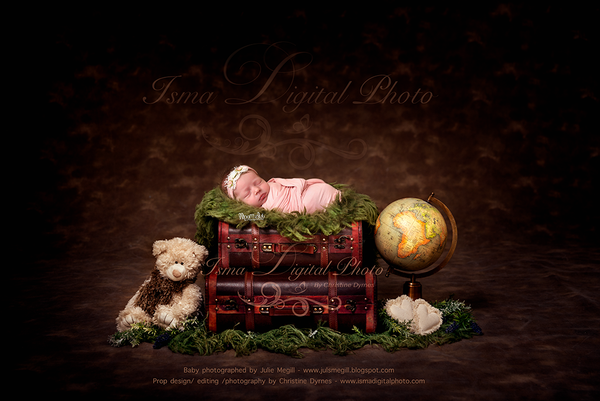 Newborn digital suitcase with globe and teddy bear - Digital backdrop /background - JPG