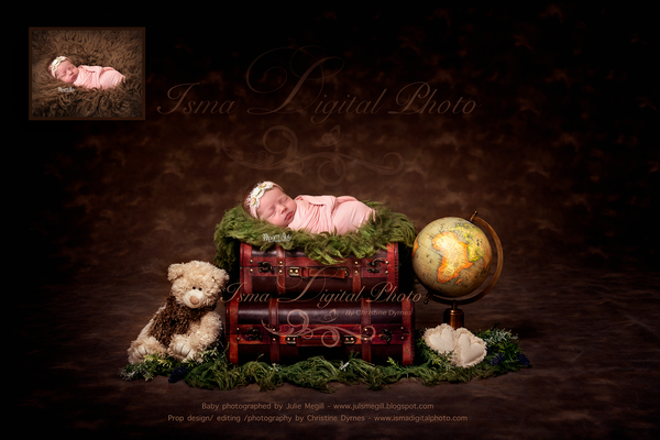 Newborn digital suitcase with globe and teddy bear - Digital backdrop - psd with layers