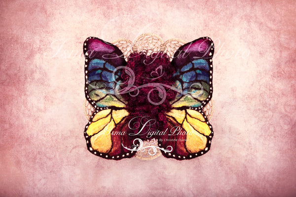 Newborn felted wool butterfly 1 - Digital backdrop /background - psd with layers