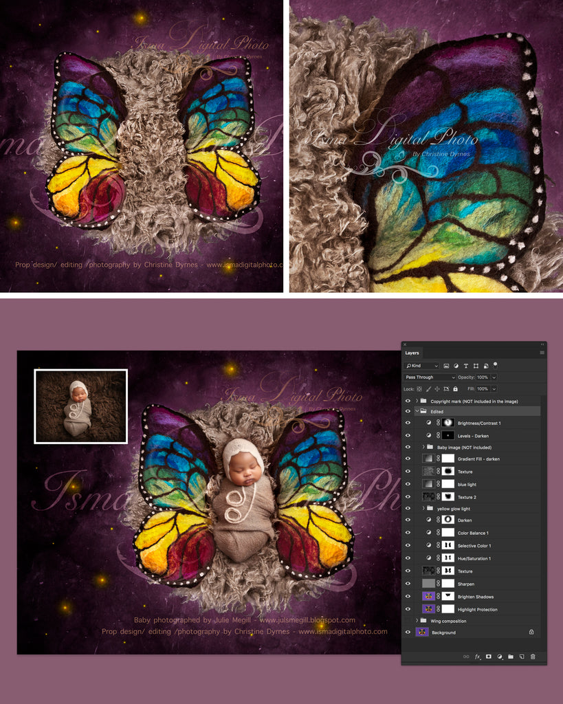 newborn felted wool butterfly 2 digital backdrop psd with layers - Color Butterfly 2
