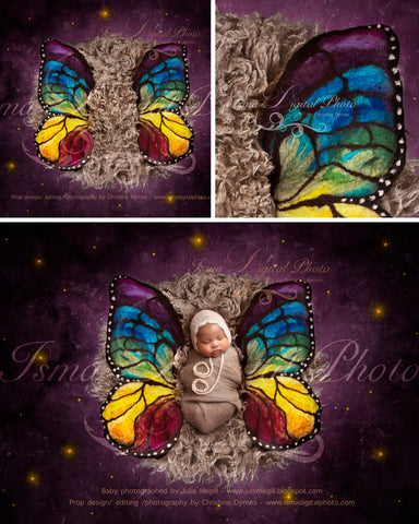 Newborn felted wool butterfly 2 - Digital backdrop /background props