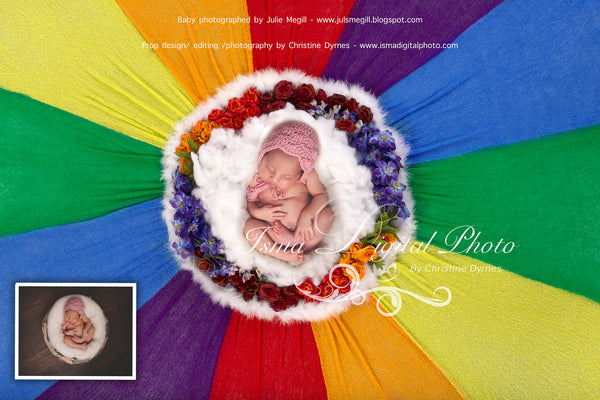 Rainbow Baby 1 - Digital background backdrop Newborn Photography Prop download - psd file with Layers