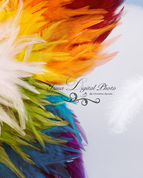 Rainbow feather butterfly - Digital backdrop /background - psd with layers