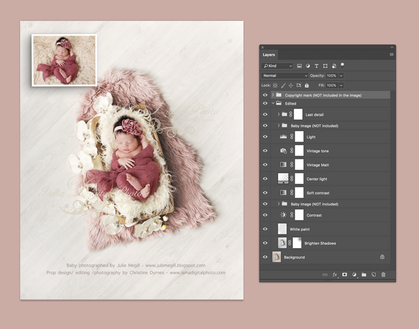 Trencher bowls with orchid - Digital backdrop /props - Newborn photography - psd with layers