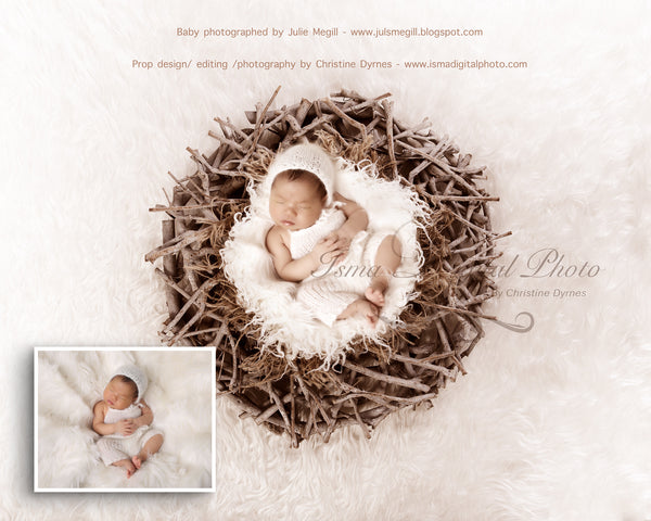 Wood Nest With Light Background - Beautiful Digital background Newborn Photography Prop download - psd with Layers