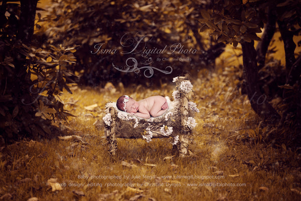 Wooden Bed Nature 1  - Beautiful Digital background backdrops Newborn Photography Props download