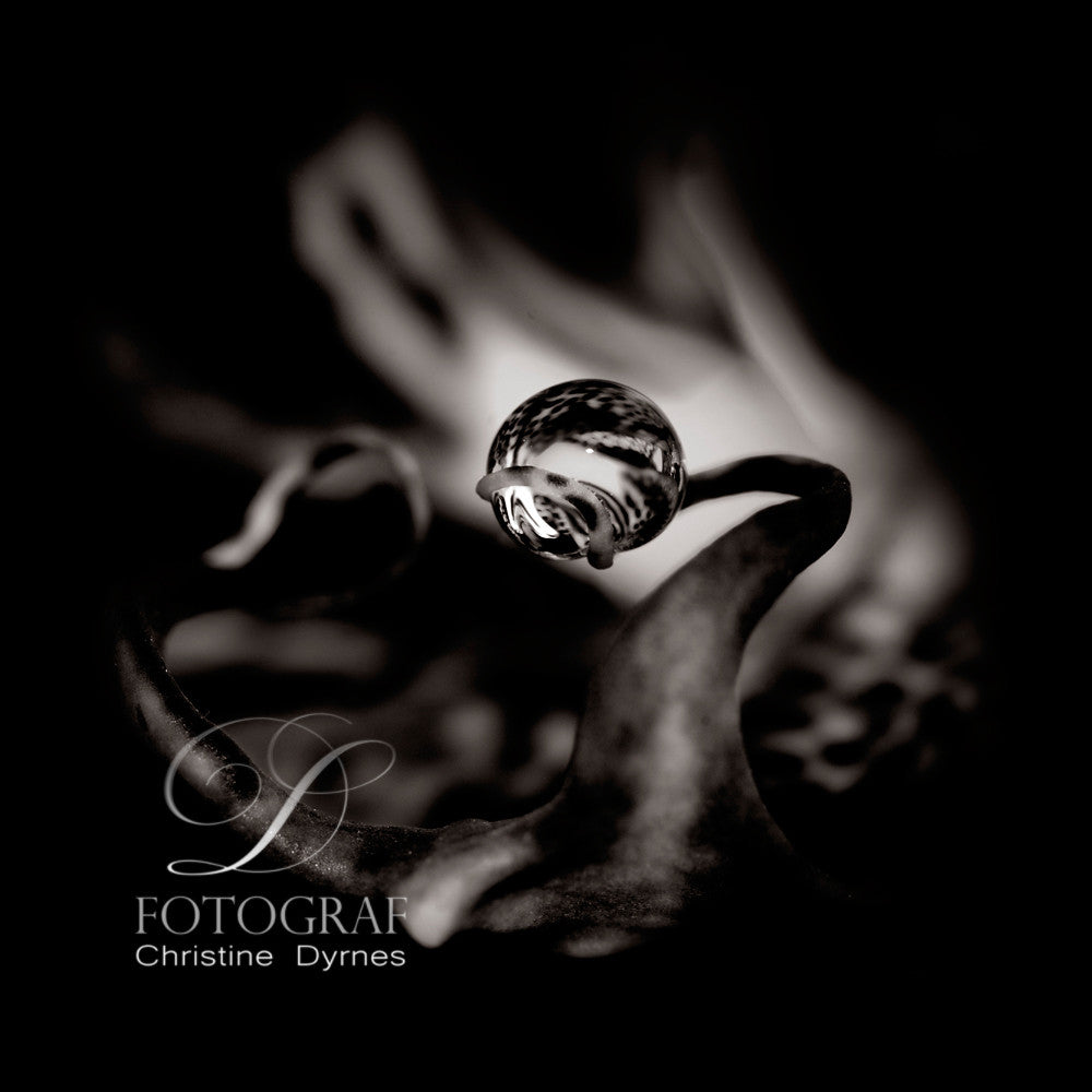 Artistic water drop - Capture - Limited edition of  10 copies