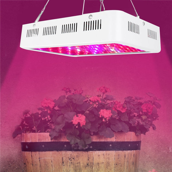 1000W Full Spectrum LED Grow Light for indoor greenhouse & hydroponic plants