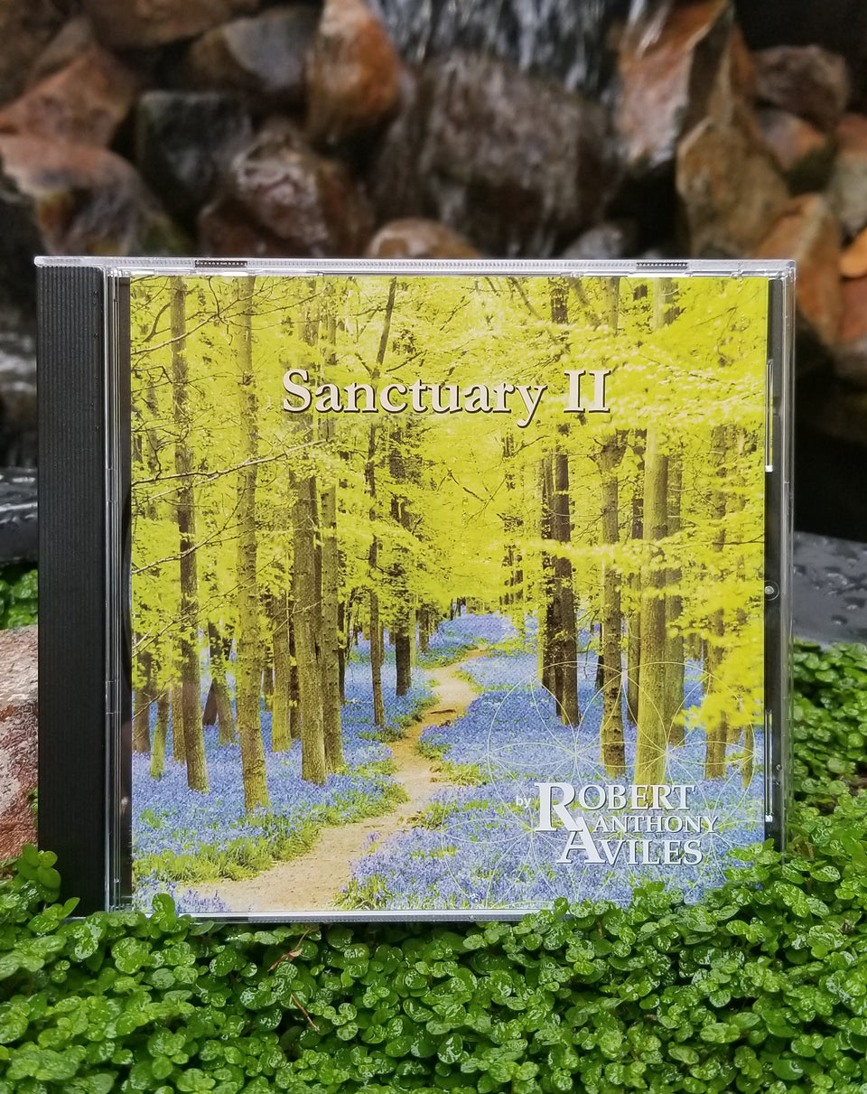 Sanctuary II - CD - Energized soothing music