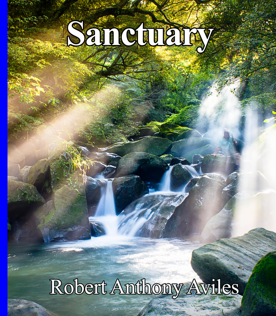 SANCTUARY - Digital Download - Best Seller - Energizing yet soothing music