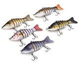 Multi Color LifeLike Fishing Lure