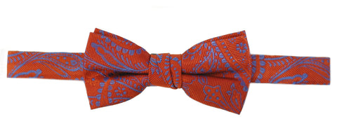 Boy's Silk Ties- T164