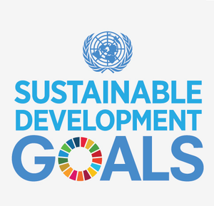 Sustainable Development Goals - Elvis & Kresse