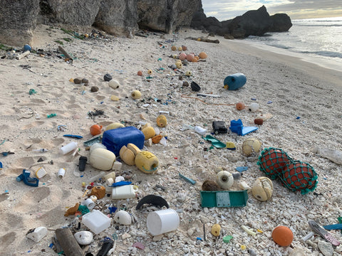 Plastic Pollution on Henderson Island - Elvis & Kresse