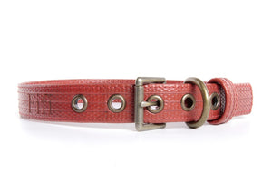 Elvis & Kresse Fire-hose Dog Collar