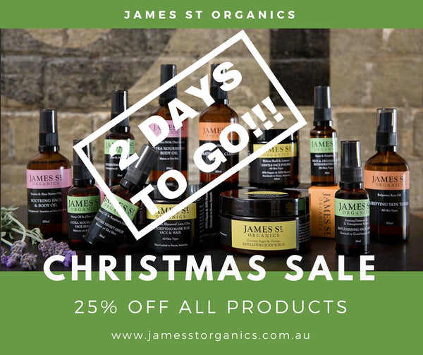 CHRISTMAS SALE - 2 DAYS TO GO!
