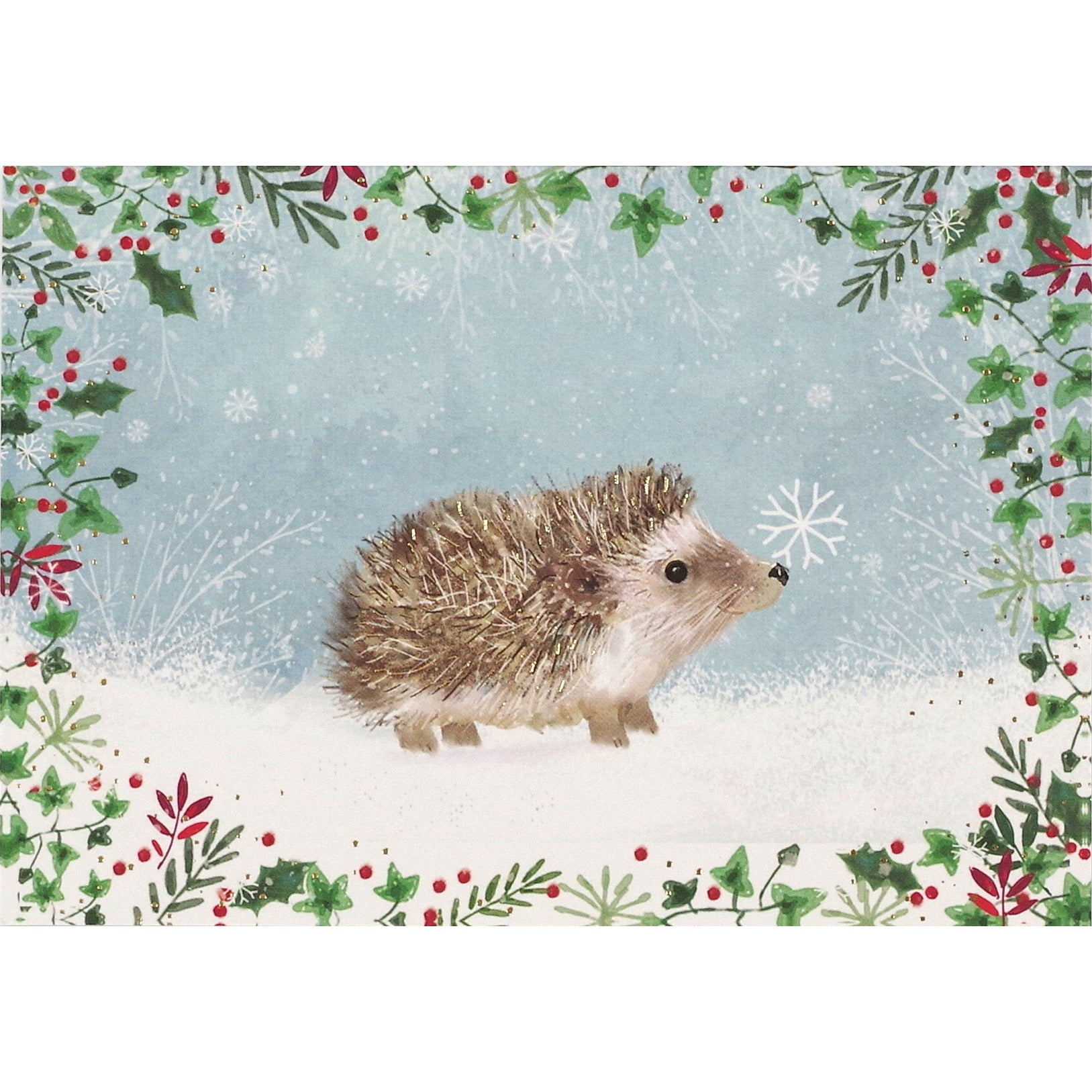 Happy Hedgehogs - 6904