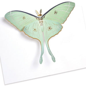 Luna Moth Pop-Up Card