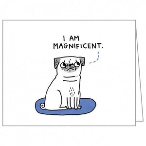 Boxed Notecards QuickNotes A Dog's Life Set Of 20 | The Gifted Type
