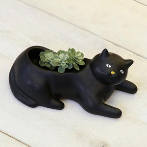 Cosmo the Cat Planter