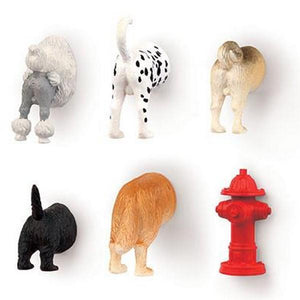 Dog Butt Magnet Set | Magnets | The Gifted Type