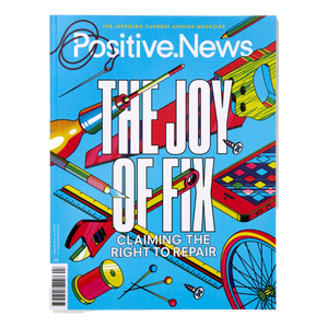 Positive News - Issue 97: The Joy of Fix | The Gifted Type