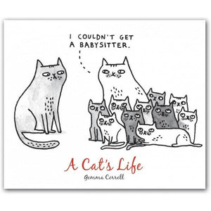 Boxed Notecards QuickNotes A Cat's Life Set Of 20 | The Gifted Type