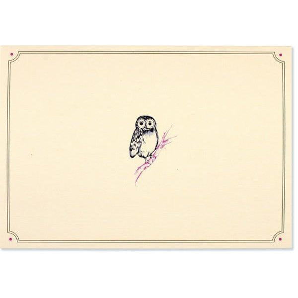 Owl Portrait Peter Pauper Blank Notecards | The Gifted Type