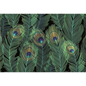 Feathers Peter Pauper Blank Notecards | The Gifted Type
